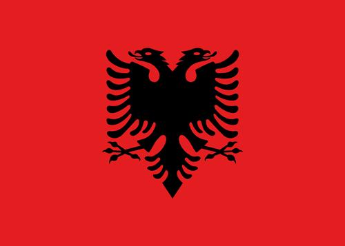 Albanisch- Einstufungstest
