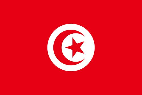 Tunesisch- Einstufungstest